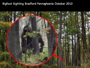 bigfoot-bradford-pa-600